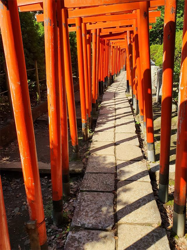 japan2019_ueno3
